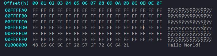 Hex Editor View