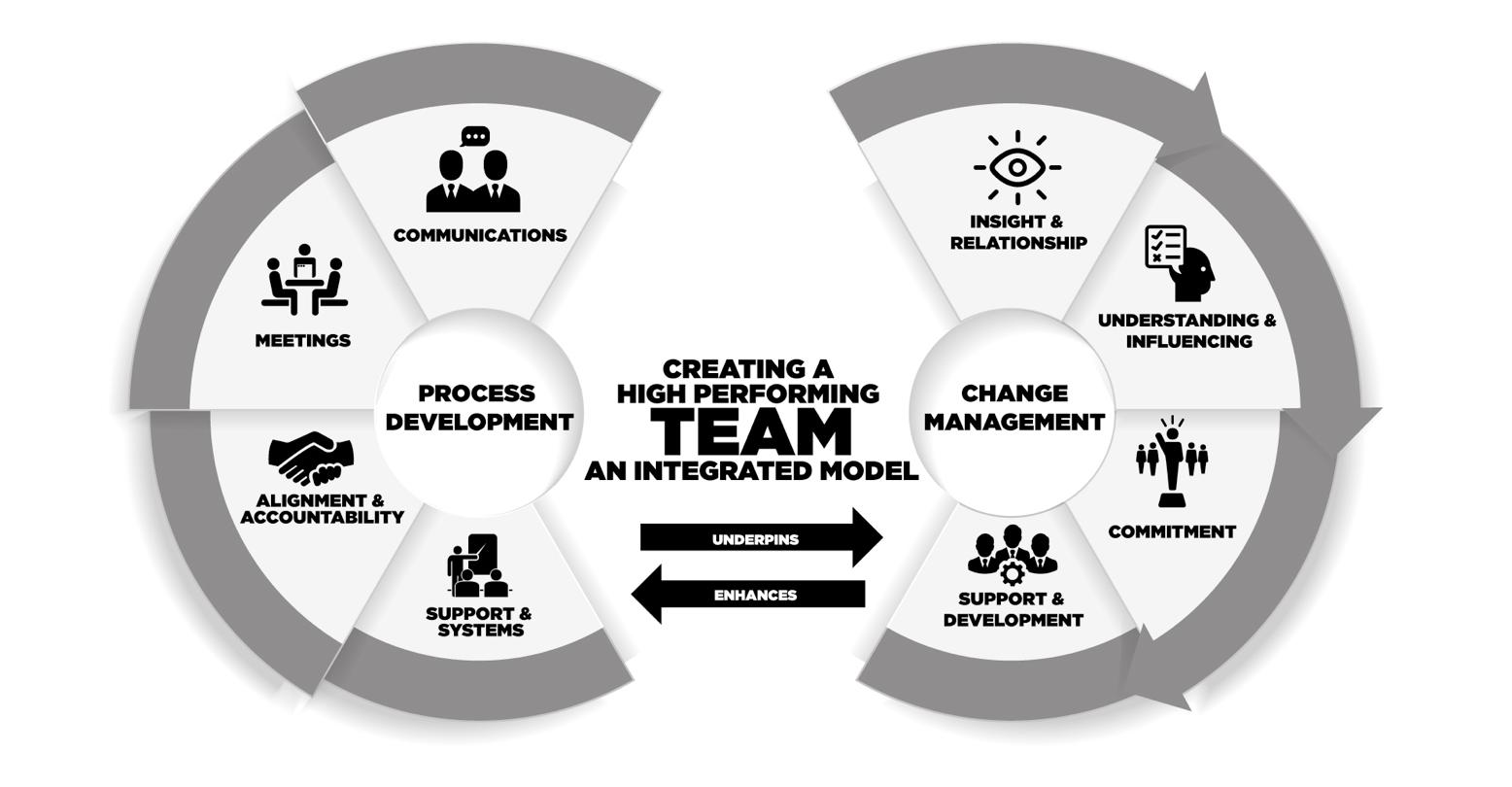 High performing team model
